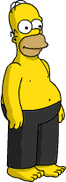 Ninja Homer
