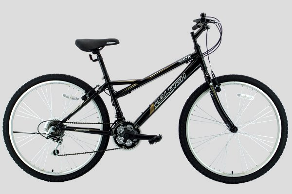 choo ho leong  chl  bicycle  raleigh mountain bicycles
