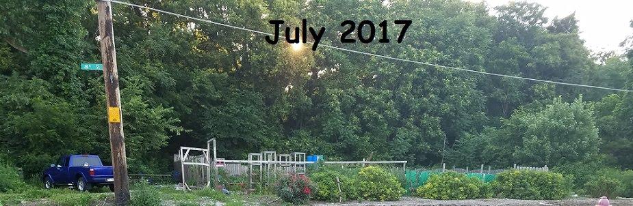 Old Dave's Garden