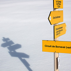 A photograph of a signpost and its shadow.