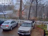 Video Mengerikan Saat Pohon Tersambar Petir