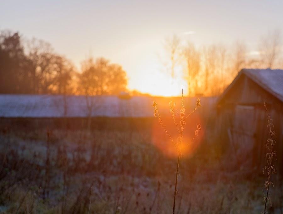 Vibrant sunset, Fuji X-T1
