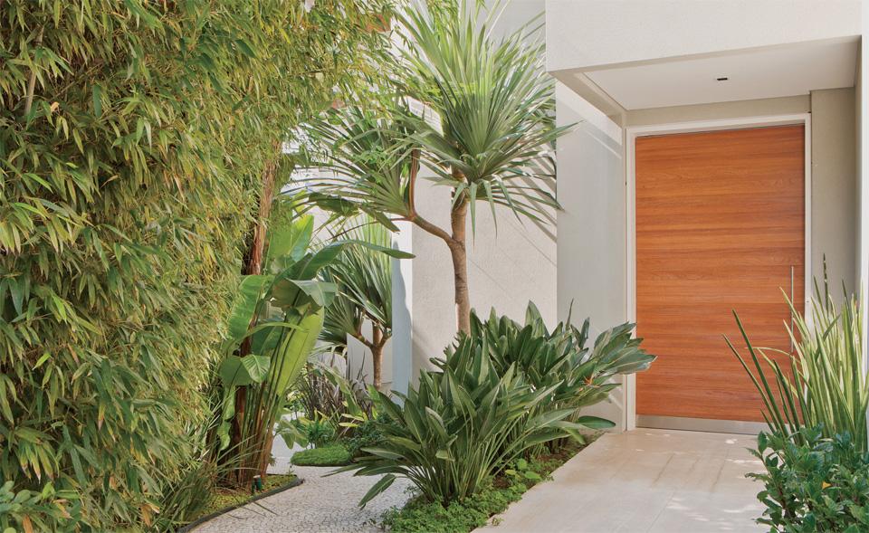 plantas jardim tropical:House