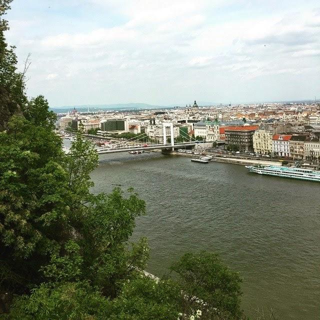 Денис Стаховский в Будапеште