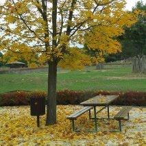 Podzim v ZOO