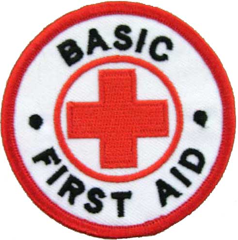 Mommies Angels: Why should everyone know basic first aid!!