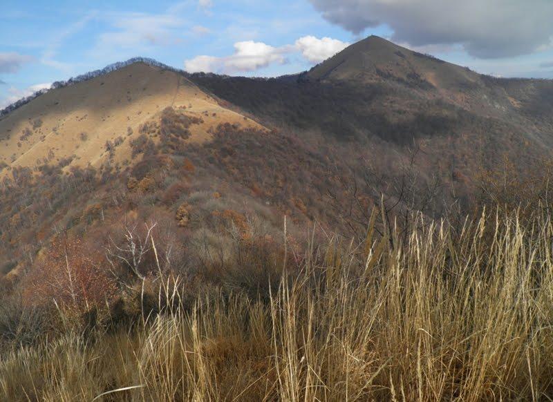 Montagnamania monte palanzone for Il verso dell asino