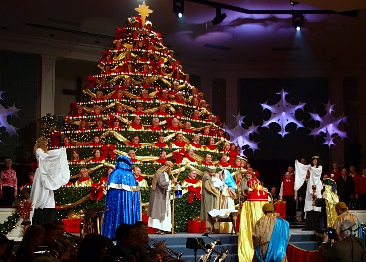 best living christmas tree photos - Living Christmas Tree