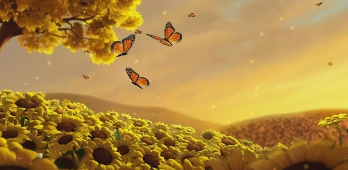 Android Apps Butterfly Live Wallpaper Hd