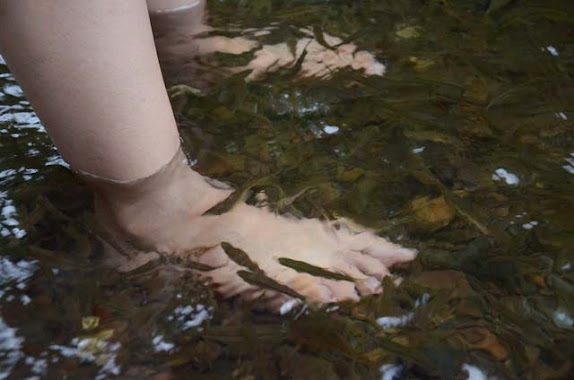 river trail adventure fish feeding