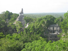 Maya ruins in Tikal