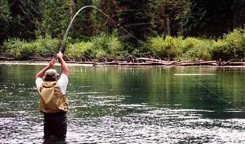 Alaska Salmon Fishing on Basic Fishing Tips  Alaska Salmon Fishing  Fishing For King Salmon