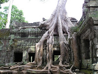 templo angkor, camboya, entrevista la vuelta al mundo.net, blog la vuelta al mundo.net,vuelta al mundo, round the world, información viajes, consejos, fotos, guía, diario, excursiones
