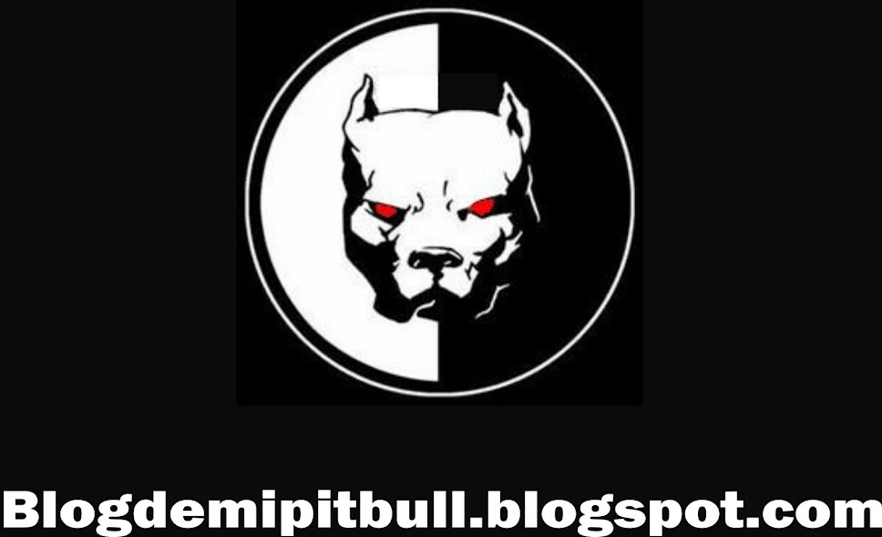 Blog de mi Pitbull