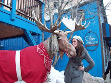 Kiss the MOOSE