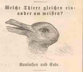 Is It Duck or Rabbit? (是免子或是鴨子?)