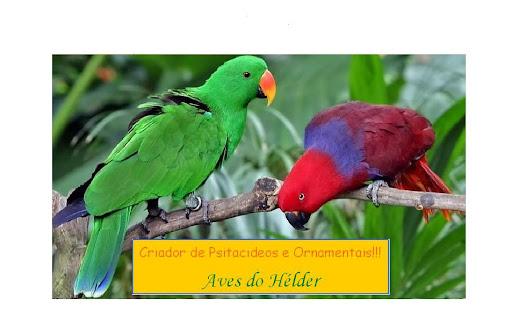 Aves do Hélder