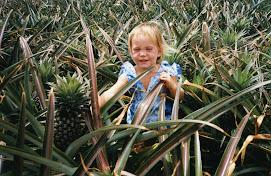 1989 : Antilles
