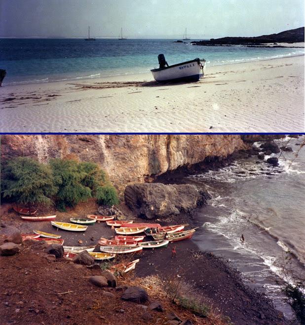 Barques et annexe de Mowgli