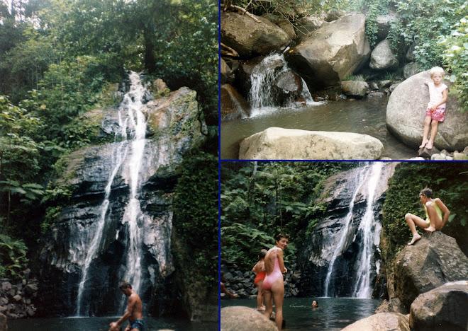 Les cascades de l'île Coco