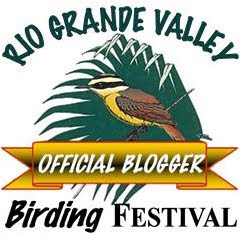 Rio Grande Valley Birding Festival Blogger Button