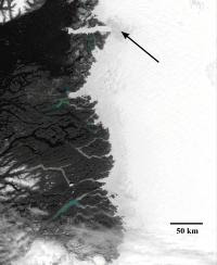 This is a satellite image of Western Greenland, acquired by NASA s MODIS satellite. The narrow grey band in the center of the image is melting ice, between the rocky coast to the left - west and thicker, non-melting, higher altitude ice to the right- east. Small lakes form in this region during the summer. Arrow points to darker grey zone of rapidly thinning ice near the outlet of Jacobshavn glacier, which also loses mass due to iceberg calving.