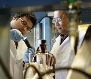 Metal masters - Vismadeb Mazumder and chemistry professor Shouheng Sun, both of Brown University, have demonstrated that a unique core-shell nanoparticle is a cheaper, more active and longer lasting fuel-cell catalyst than commercially available platinum products