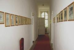 Muzeul orasului Sannicolau Mare
