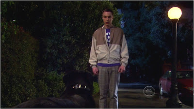 The Big Bang Theory - 3X20 | OBLOGDAMARI.COM