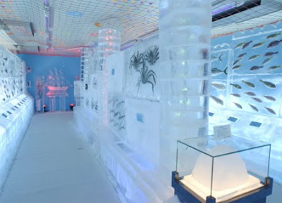 Ice Aquarium in Kesennuma -  Japan