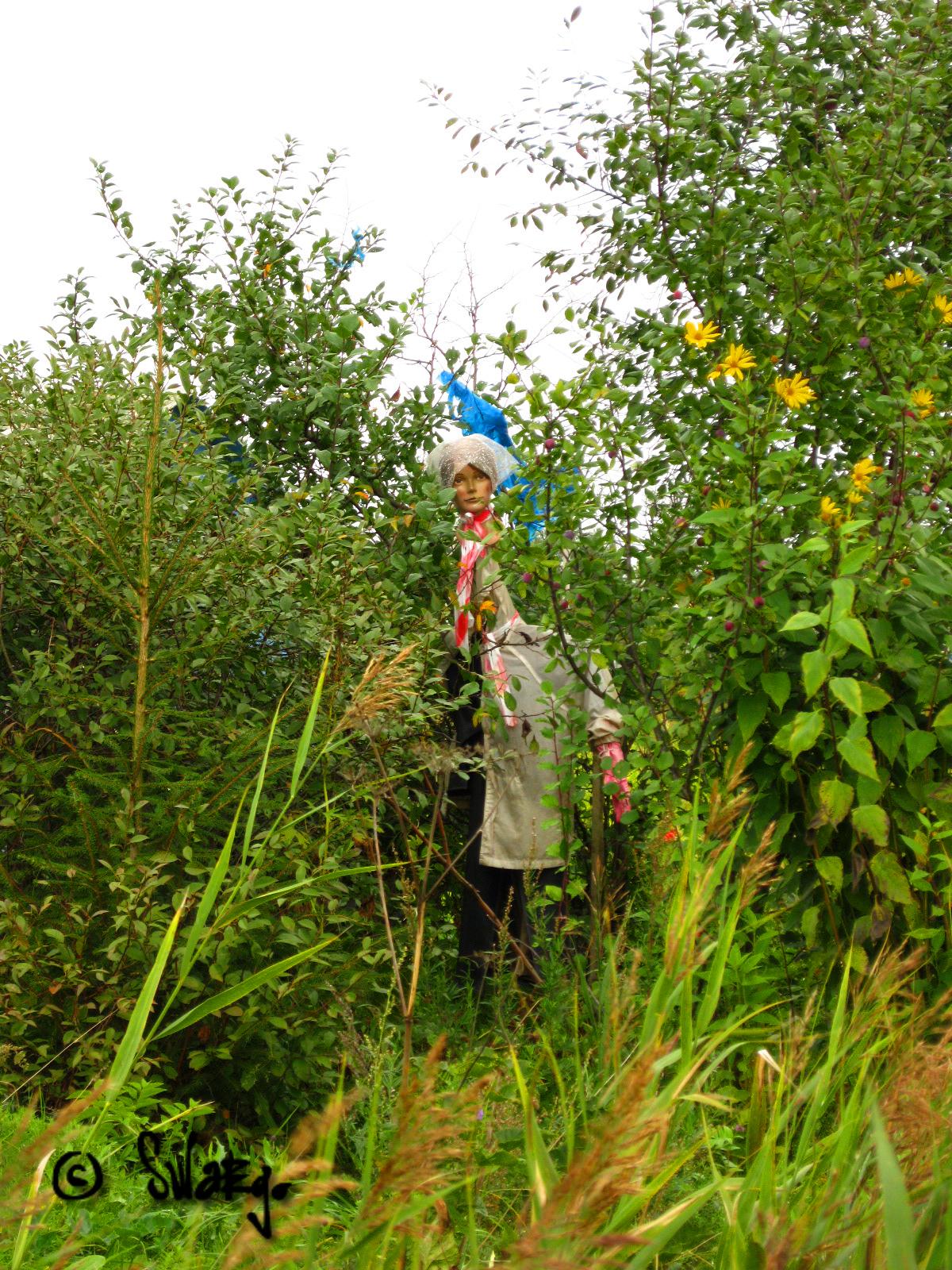 Баба в кустах фото 274-707