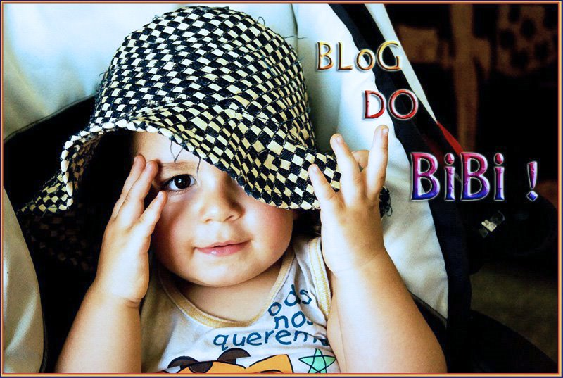 BloG Do BiBi