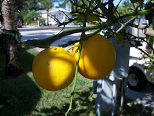 The lemons.....