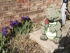 Indiana Gator (153)