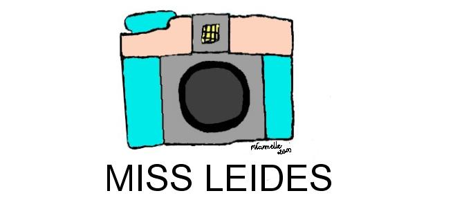 MISSLEIDES