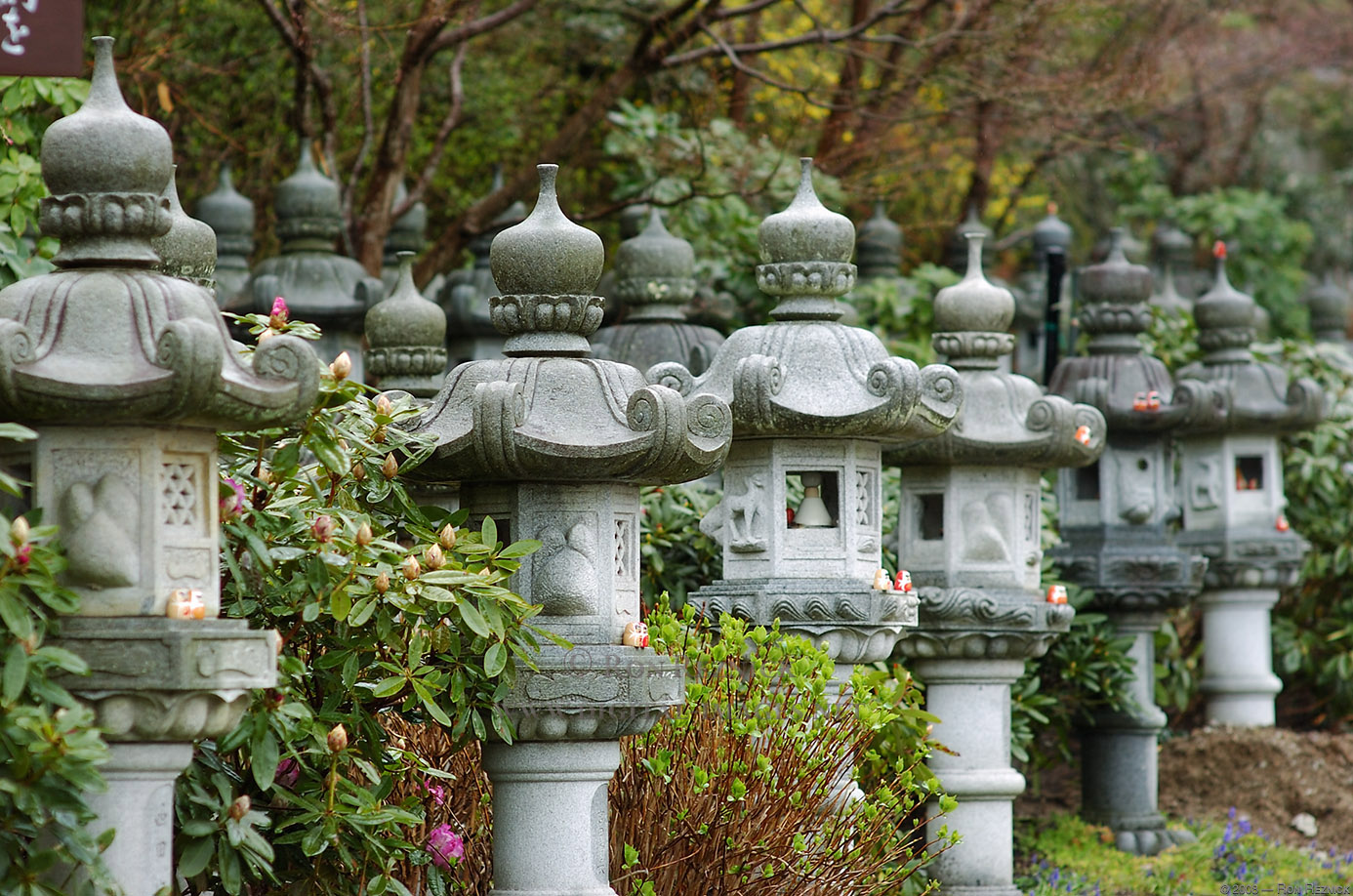 Four seasons of my soul 12 01 2010 01 01 2011 for Jardines japoneses