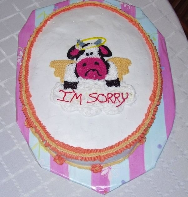 Sorry Cakes For Friend | Most Creative Sorry Cakes Photos Seen On www.coolpicturegallery.us