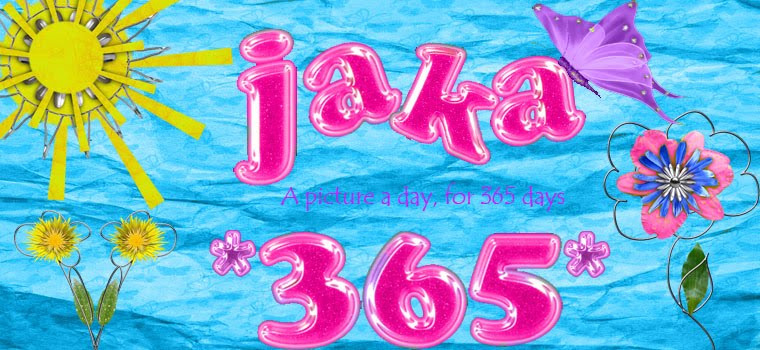 JAKA 365