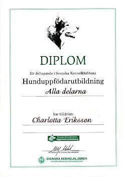 Diplom på genomförd hunduppfödarutbildning.