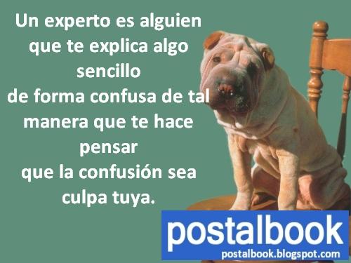 Imagenes De Fotos Chistosas - Imagenes Chistosas Facebook