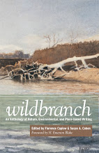 Wildbranch Anthology - available now