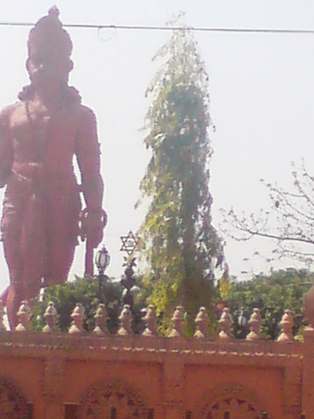 Beautifl statue of HHanumanji at chatterpur temple complex