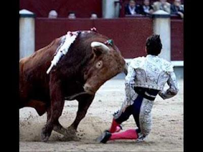 toro coje a torero