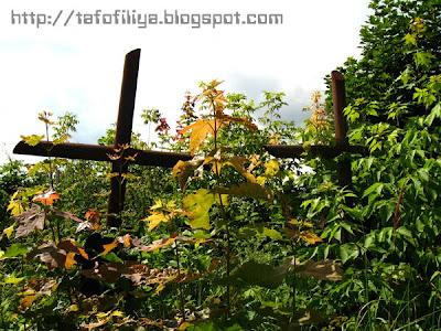 ограда, заброшенные могилы, заросшие могилы, памятники, надгробия, кладбище в Гродно, кресты