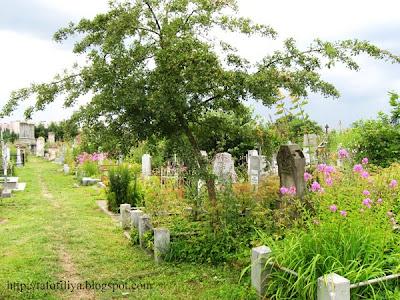 кладбище, кладбище в Гродно, старое кладбище, старые могилы, памятники, надгробия