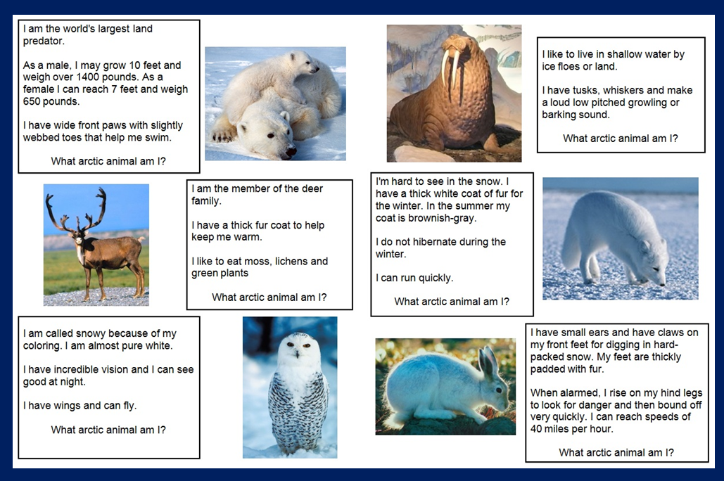 have added a What Arctic Aminal am I? file folder game to 123 Learn ...