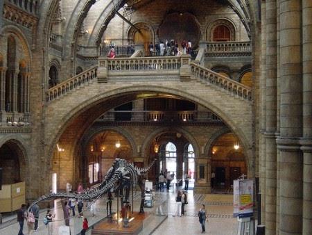 Educar en casa museo nacional de ciencias naturales y museo del prado madrid - Educar en casa ...