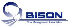 Bison Risk Management Associates