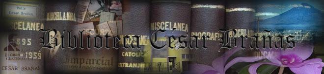 Biblioteca César Brañas