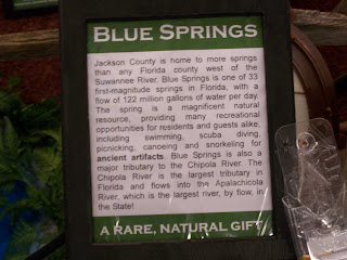 Jackson Blue Springs Sign